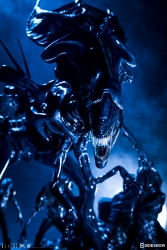 Sideshow - Alien Collectibles - Alien Queen Statue