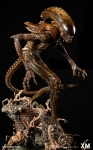 XM Studios - Alien Hive-Warrior Supreme Scale Series Statue