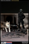 Sideshow - Snakes Eyes and Timber Sixth Scale Figure Set