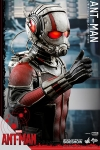 Hot Toys - 1/6 Scale Ant-Man - Ant-Man Collectible Figure