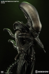 Sideshow - Alien Collectibles - Alien Internecivus Raptus Statue