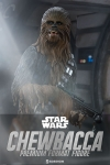 Sideshow - Star Wars Collectibles - Chewbacca V2 Premium Format Statue